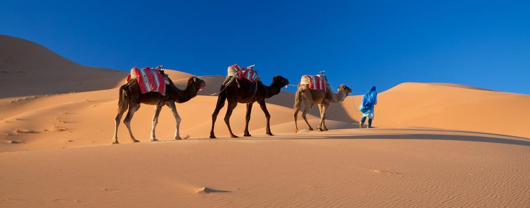 Top 10 des activités à faire au Maroc en famille.